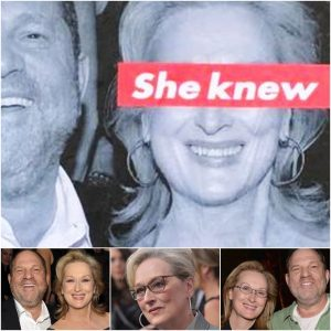 Meryl Streep Gets Called Out With #SheKnew Posters All Over LA